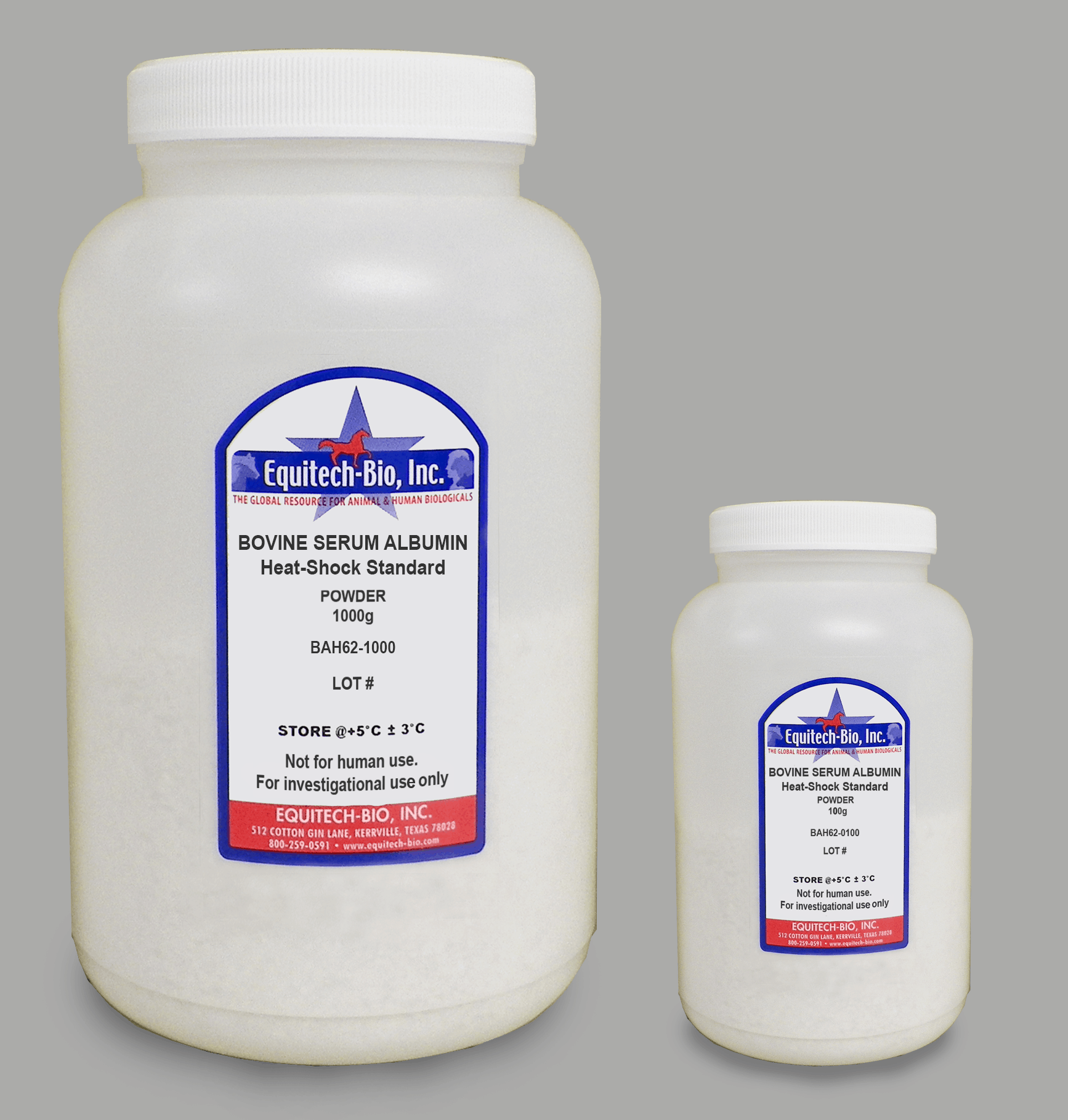 BAH62 -- Standard grade Heat Shock Bovine Serum Albumin Powder pH 7
