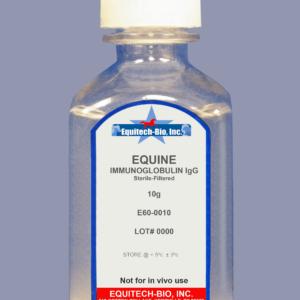 E60 -- Equine IgG Solution >= 97% Purity